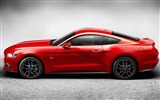 Title:2015 Ford Mustang GT Car HD Wallpaper 12 Views:2249