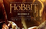 Title:The Hobbit 2-The Desolation of Smaug Movie HD Wallpaper 01 Views:2984