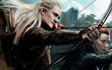 Title:The Hobbit 2-The Desolation of Smaug Movie HD Wallpaper 08 Views:9897