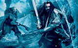 Title:The Hobbit 2-The Desolation of Smaug Movie HD Wallpaper 09 Views:4851