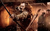 Title:The Hobbit 2-The Desolation of Smaug Movie HD Wallpaper 11 Views:3618