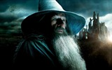 Title:The Hobbit 2-The Desolation of Smaug Movie HD Wallpaper 12 Views:3000