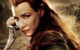 Title:The Hobbit 2-The Desolation of Smaug Movie HD Wallpaper 14 Views:6620