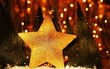 Title:new year christmas trees star-Holidays wallpaper Views:2183