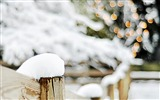 Title:winter bokeh lights christmas-Holidays wallpaper Views:2339