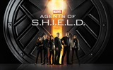 Title:agents of shield-Movie HD Wallpaper Views:20280