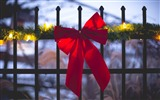 Title:fence ribbon red holiday-HIGH Quality Wallpaper Views:2188
