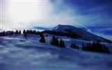 Title:mountains snow spruce-HD Photo Wallpaper Views:2095