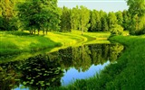 Title:spring river-Seasons HD Wallpaper Views:10534