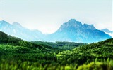 Title:trees mountains green-Photo HD Wallpaper Views:2082
