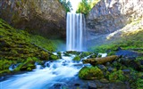 Title:falling water-Nature HD Wallpaper Views:3522