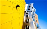 Title:frank gehry architecture-Cities HD Wallpaper Views:3196