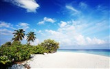 Title:maldives ocean beach-Scenery HD Wallpapers Views:2404