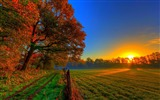 Title:autumn sunset-Scenery HD Wallpaper Views:3245