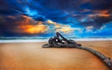 Title:beach rope-Scenery HD Wallpaper Views:2707