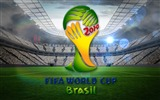 Title:2014 Brazil 20th FIFA World Cup Desktop Wallpapers Views:8076