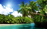 Title:corner palm beach-Scenery HD Wallpaper Views:2975