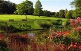 标题:汉普斯特德希思公园-最好的风景壁纸 浏览:1041