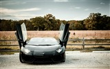 Title:Aventador Lamborghini-HD Photo wallpapers Views:2066