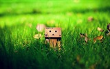 Title:Cute Danbo On Grass-High quality wallpaper Views:2812