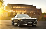 Title:mustang shelby gt500-High quality wallpaper Views:2734