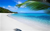 Title:Fiji Beach-Landscape HD Wallpaper Views:3427