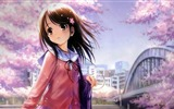 Title:Anime With Sakura Flower-High quality wallpaper Views:1934