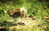 Title:Cute Danbo Small Bicycle-High quality wallpaper Views:1751