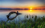 Title:Dead Tree In Lake Sunset-Photos HD Wallpaper Views:2194