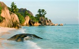 Title:Seychelles Beach Waves-HD Desktop Wallpaper Views:2648