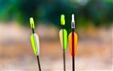 Title:colorful arrows-High quality wallpaper Views:2664