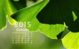 Title:2015 Calendar Desktop Themes Wallpaper Views:13440