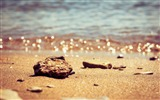Title:Beach Stones-HD Widescreen Wallpaper Views:2524