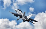 Title:F18 Super Hornet-Military HD Wallpaper Views:2783