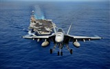 Title:navy fighter-Military HD Wallpaper Views:3082