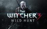 Title:THE WITCHER 3 WILD HUNT Game HD Wallpaper Views:10739