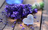 Title:lavender and heart-Photo HD Wallpapers Views:2148