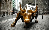 Title:charging bull new york-photography HD wallpaper Views:1594