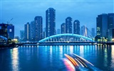 Title:Bustling Cities Night Scenery Widescreen Wallpaper Views:5495