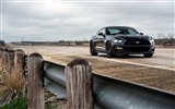 Title:ford mustang gt hpe-Auto HD Wallpaper Views:1700