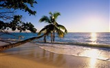Title:silhouette island-Nature Wallpaper Views:1422