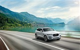 Title:2016 Jaguar F Pace Series HD Wallpaper Views:5380