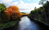 Title:autumn river trees nature-Photography HD wallpaper Views:1358