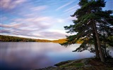 Title:sweden lakes trees-Photography Wallpaper Views:1769