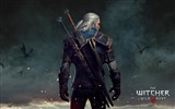 Title:Geralt The Witcher 3-Game HD Wallpaper Views:2111
