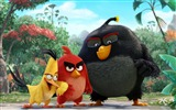 Title:The Angry Birds Movie 2016 HD Wallpaper Views:3034