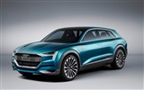 Title:2015 Audi E-tron Quattro Concept Wallpaper Views:2185