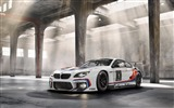 Title:2016 BMW M6 GT3 Auto HD Wallpaper 02 Views:2005