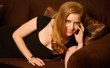 Title:Amy Adams Wide-photo HD Desktop Wallpaper Views:1794