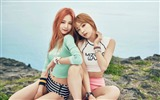 Title:EXID Korea Sexy singer photo desktop wallpaper 10 Views:1407
